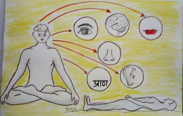 Pran Hi Sarvashreshtha (प्राण हि सर्वस्वश्रेष्ठ)